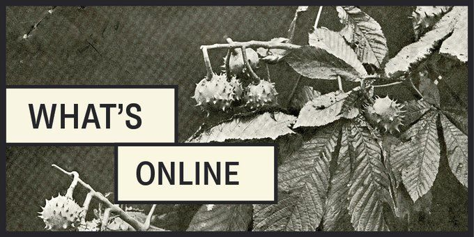 National Archives September Online Programme